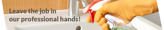 domestic_cleaning_service